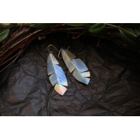 Earrings made of titanium - feathers